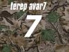 terep-avar7